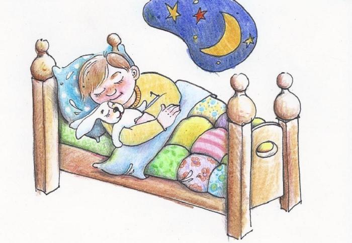 В чем польза сна ночью?